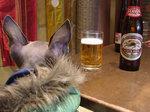 お決まりのビール♪