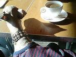 ランチには、コーヒー or 紅茶付