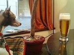 そして今日もランチビール〜♪