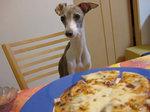 焼きたてのPizza