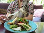 コヤリイカとセミドライトマトのサラダ、バゲット添え