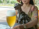 冷えたビールが美味しい〜♪