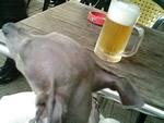 ランチビールはお得な¥300
