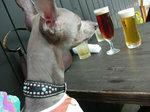 まずはビールで・・・
