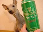 GUINNESSのBITTERはGreenの缶