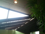 ガラス窓の天井からは光が